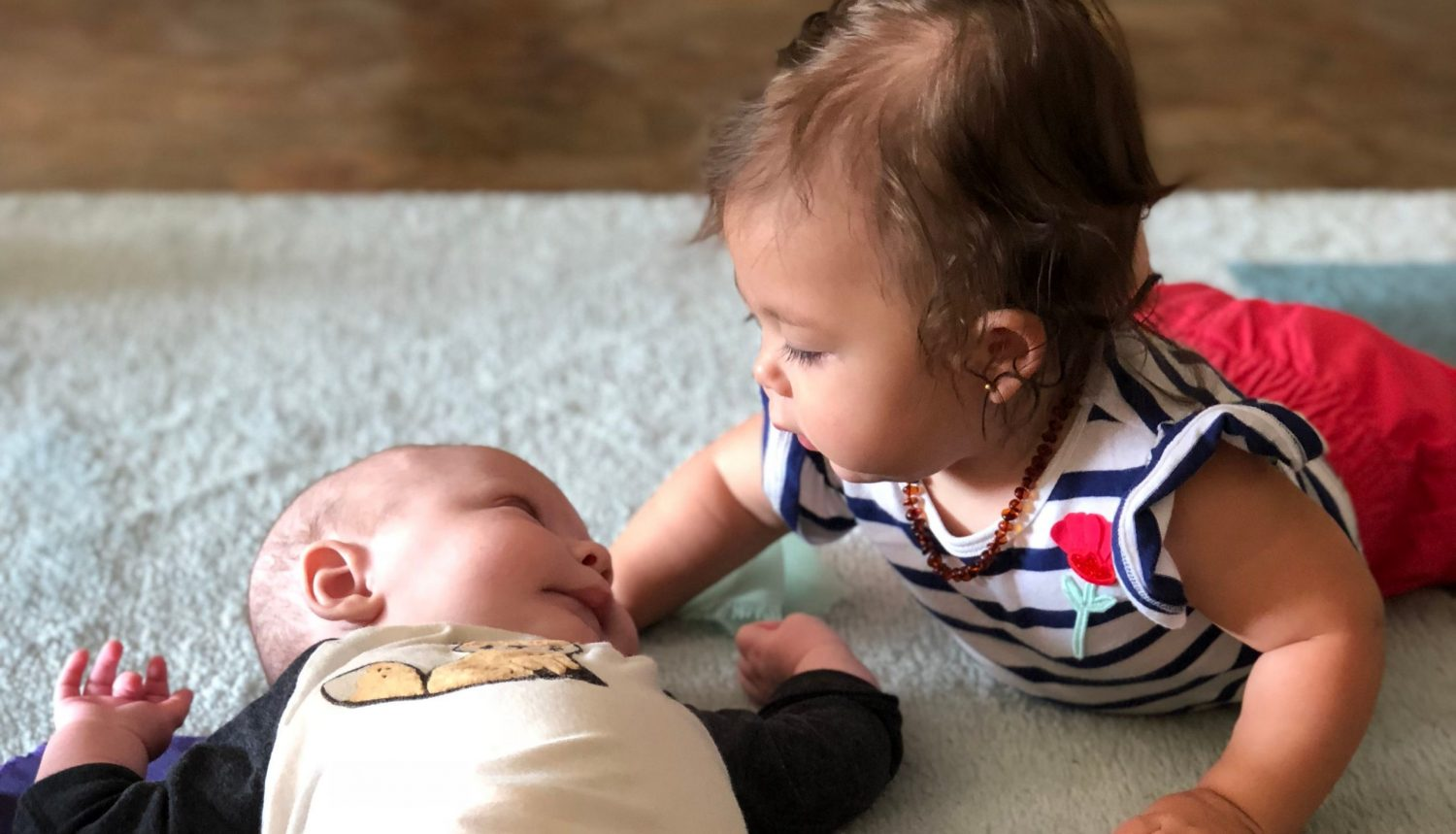 Montessori Private School Arlington TX | Preparing children for life, not just the next test. | Infants studying each other's face in our infant classroom.